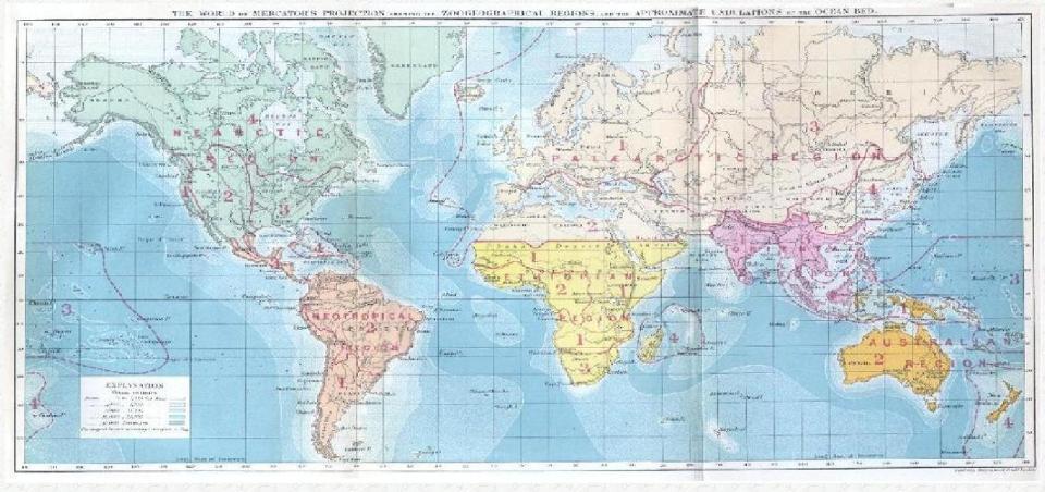 Wallace_biogeography